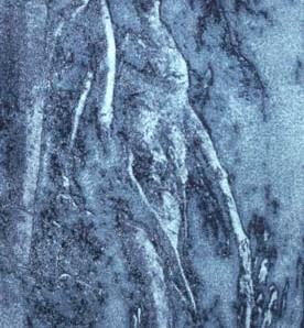 Gerard Giliberti Root_ 5x7in_Splar Plate