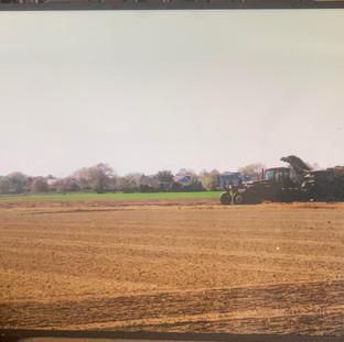 Plowing the field 24x19 Rosa Hanna Scott