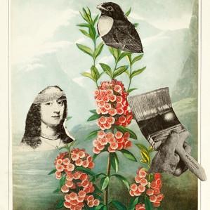 Gabriele Raacke Painted Bird 21x17.jpg
