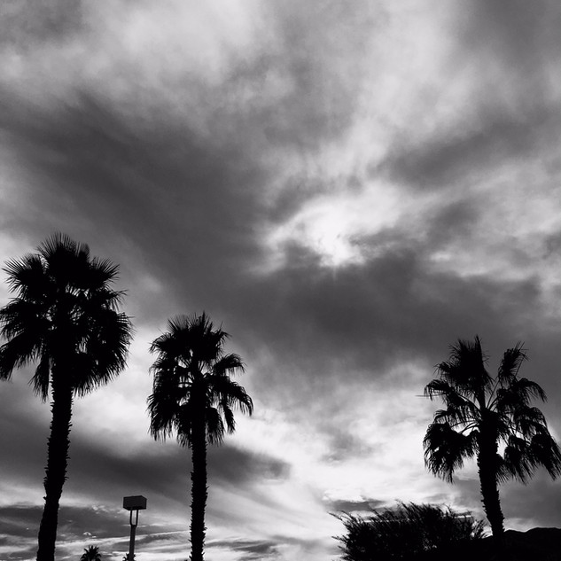 Palm Springs In The Sky #2