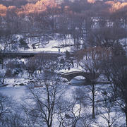 Betsy Pinover Schiff,Bow Bridge from Above 9x13 photograph