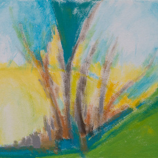 Beth Barry_Mexican Landscape_11x14__acry