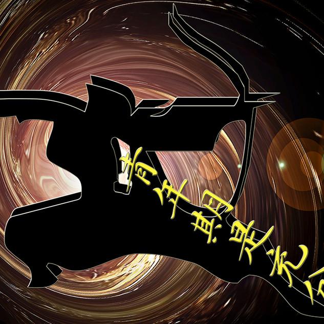 SAMURAI_10x8_STOW.jpg