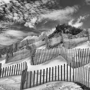 DSC_0388-Great Dune.jpg