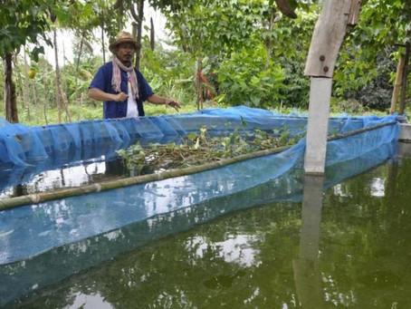 ปราชญ์โคราชเผยวิธีปลูกพืช 1 ไร่ เก็บกิน-ขายได้ตลอดปี แนะเกษตรกรนำไปปรับใช้ในชีวิตประจำวัน