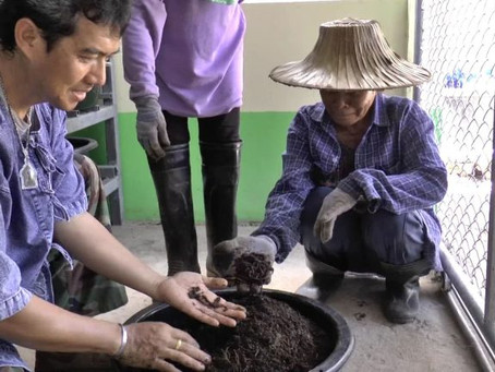 เกษตรกรไทยไอเดียเจ๋ง ทำไส้เดือนแอฟริกันเอคอร์เดอร์ ทำเงินมหาศาล!!