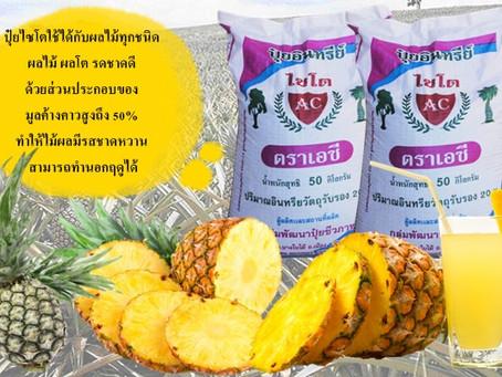 ประโยชน์ของ 'สับปะรด' ที่คุณไม่รู้ แนะวิธีกินเพื่อสุขภาพ