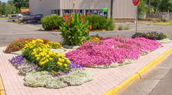 Main Street Flowers