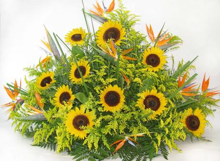 Aulas de arranjos florais para a Mulher Maravilha