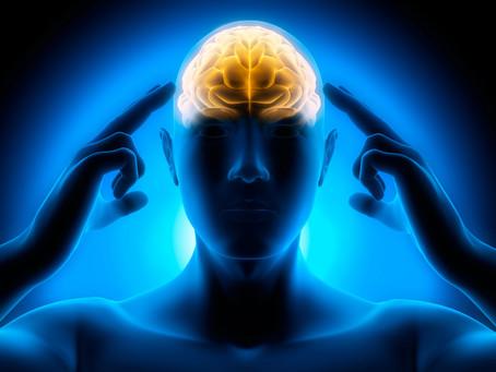 Mindfulness – Atenção plena