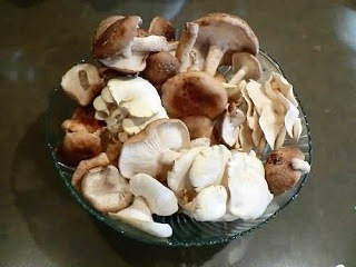 Os benefícios dos cogumelos