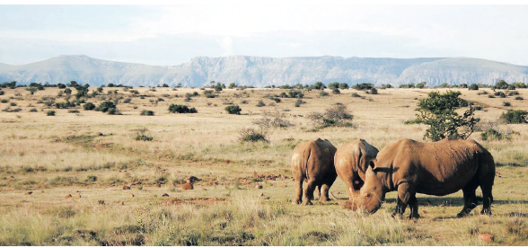 Savour the unseen side of South Africa