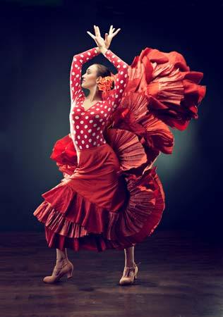 Madrid Flamenco Daily