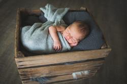 Lincoln Newborn-17