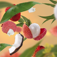 Fruity 4 p.png