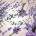 Floral 4 p.png