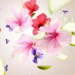 Floral 3 p.jpg