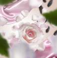 Floral 9 p.png