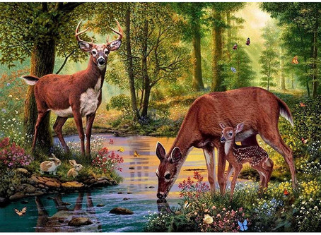 """""""As the deer pants for the water brooks"""""""