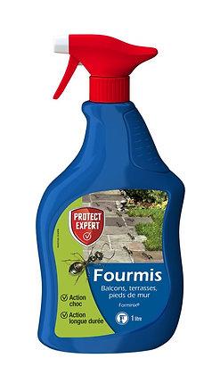 Fourmis PAE 1L