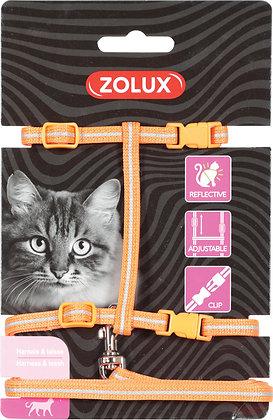 Kit de sellerie pour chat orange