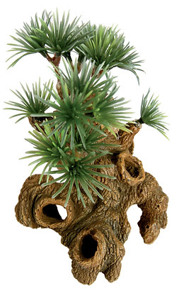 Décor bonsai nano