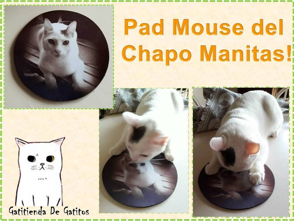 PAD Mouse del CHAPO $60