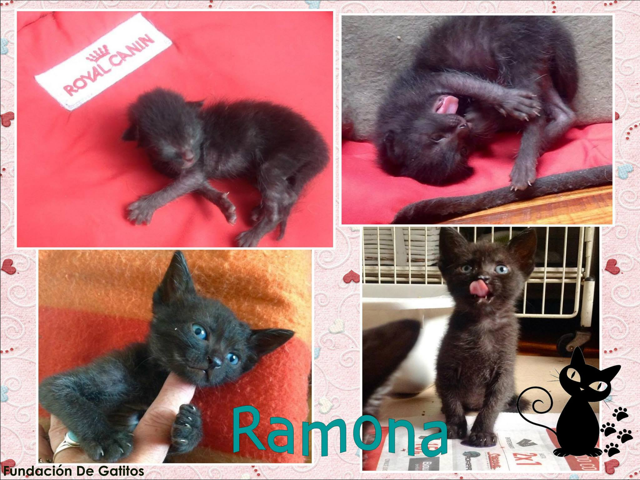 Ramoncita.jpg