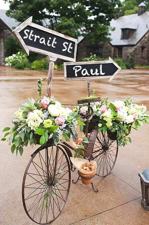Bicycle-and-plants.jpg