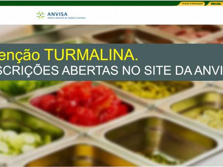 TURMALINA – BOAS PRÁTICAS DE MANIPULAÇÃO EM SERVIÇOS DE ALIMENTOS.