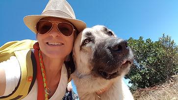 balade chien - education - randonnee