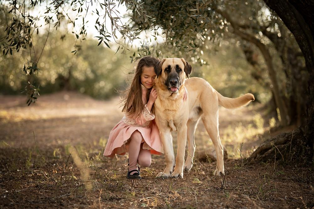 Hund, Kind, Fotografie, Bodensee, Mengen, Sigmaringen, Spanien