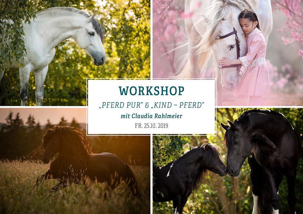 25-10-2019 Pferd Kind.jpg
