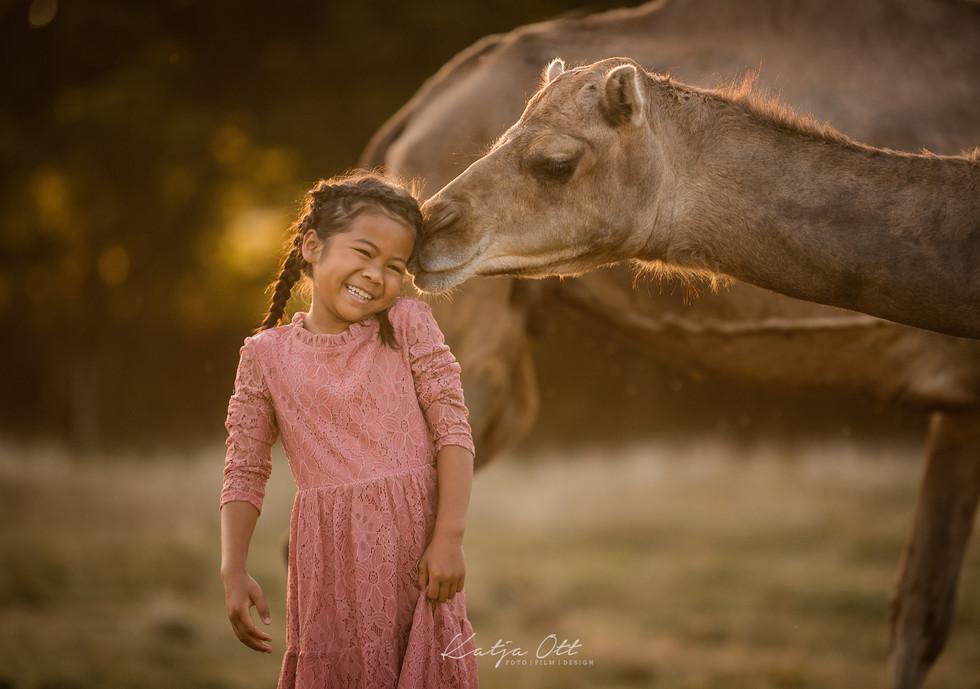 Kalender-Kamele-Susanna-9240_print-Webse