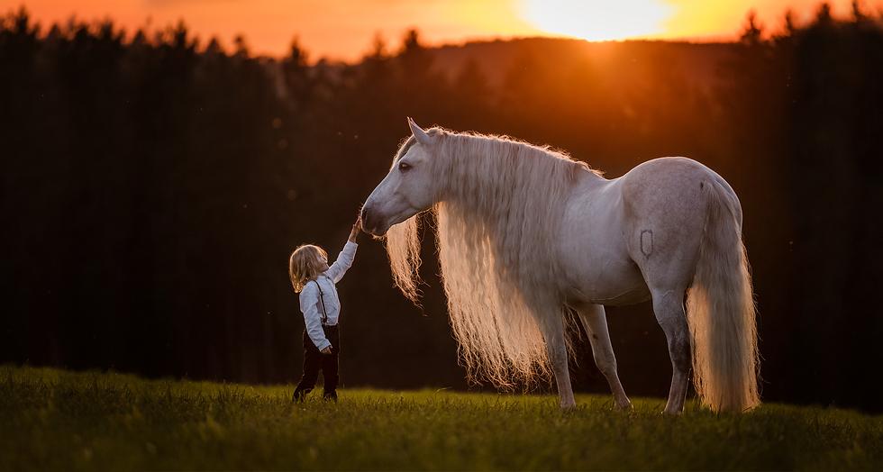 Workshop-Kind-Pferd-7286-lang.tif