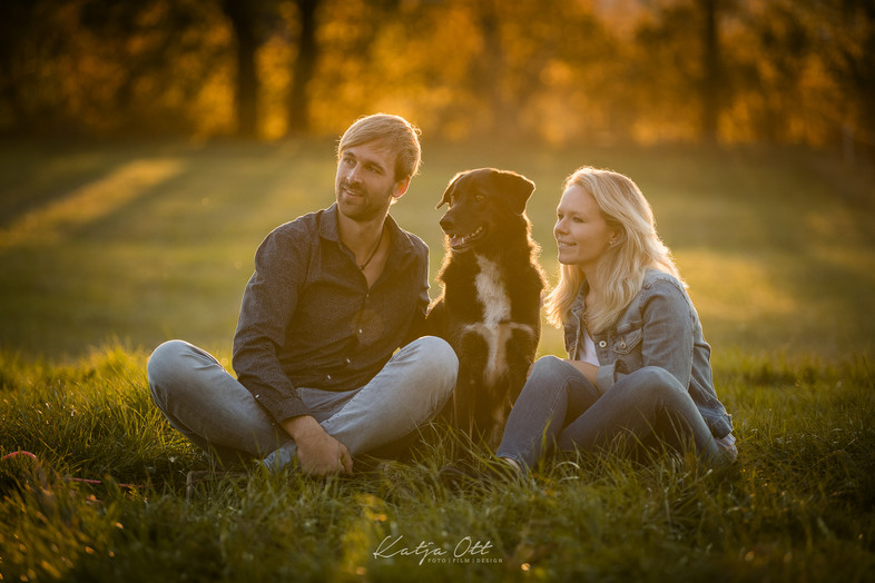 Fotografie Hund, Natur, Dog, Hund und Mensch
