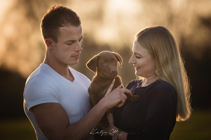Fotografie Hund, Natur, Dog, Hund und Mensch, Labdrador, Welpen