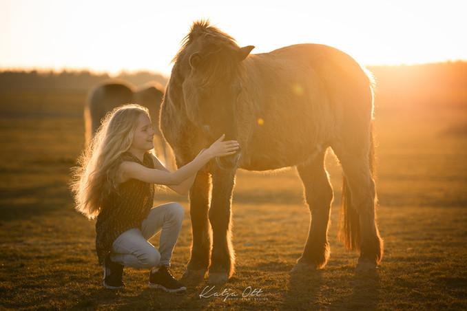 Familienfotografie, Kind, Natur, Foto, lachen, Pferd