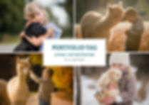 Portfolio-Tag-Aplakas-04-04-2020.jpg