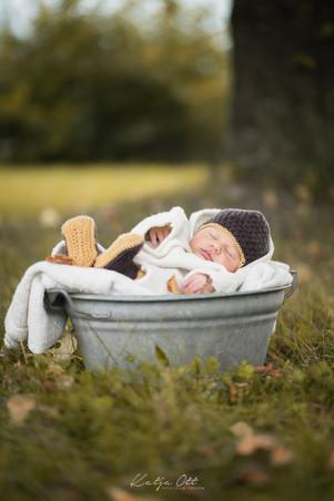 Familienfotografie, Kind, Natur, Foto, lachen, Newborn