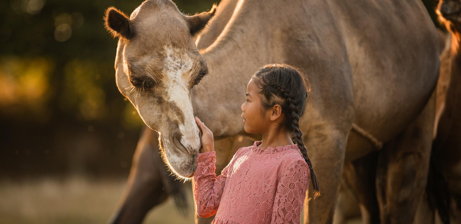 Kalender-Kamele-Susanna-9184_print-Webse