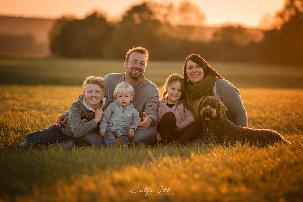 Familienfotografie, Kind, Natur, Foto, lachen Hund