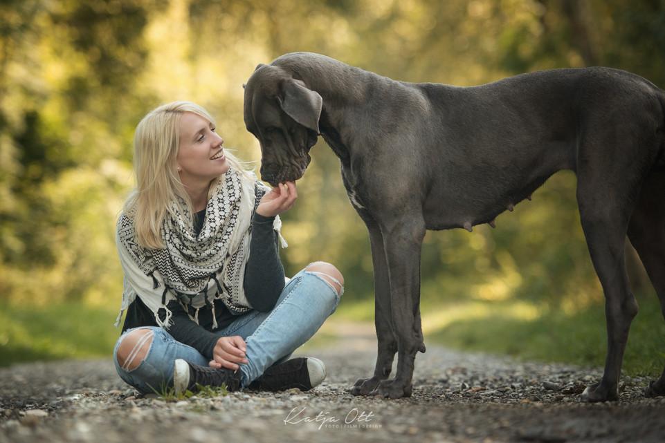 Fotografie Hund, Natur, Dog, Hund und Mensch, Deutsche Dogge