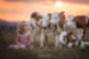 Kälbchen und Kind im Sonnenuntergang.jpg
