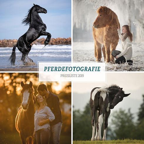 01-2019_Preisliste Pferde.jpg