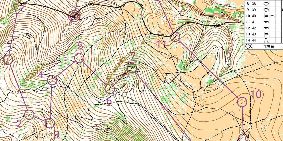 Beginner Orienteering at Blue Mountain