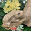 Thumbnail: Woodland Rabbit