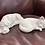 Thumbnail: Sleeping kitten