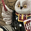 Thumbnail: Magical Owl Professor