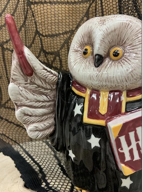 Magical Owl Professor